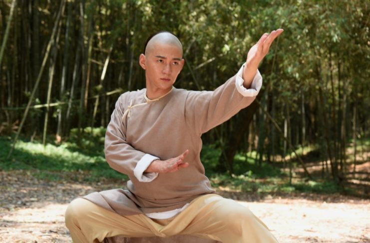 Master of the Shadowless Kick Wong Kei-Ying