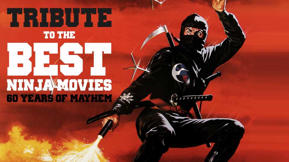 Tribute To The Best Ninja Movies